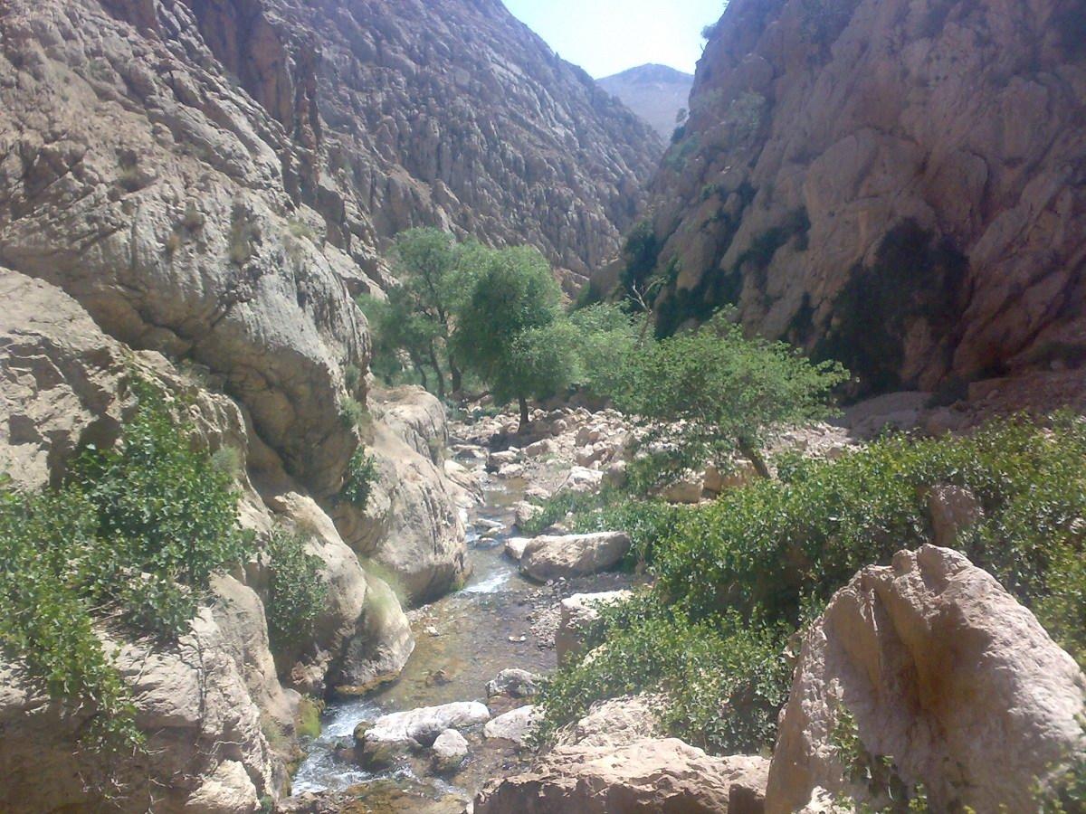Bagh-e Malek khuzestan (7)