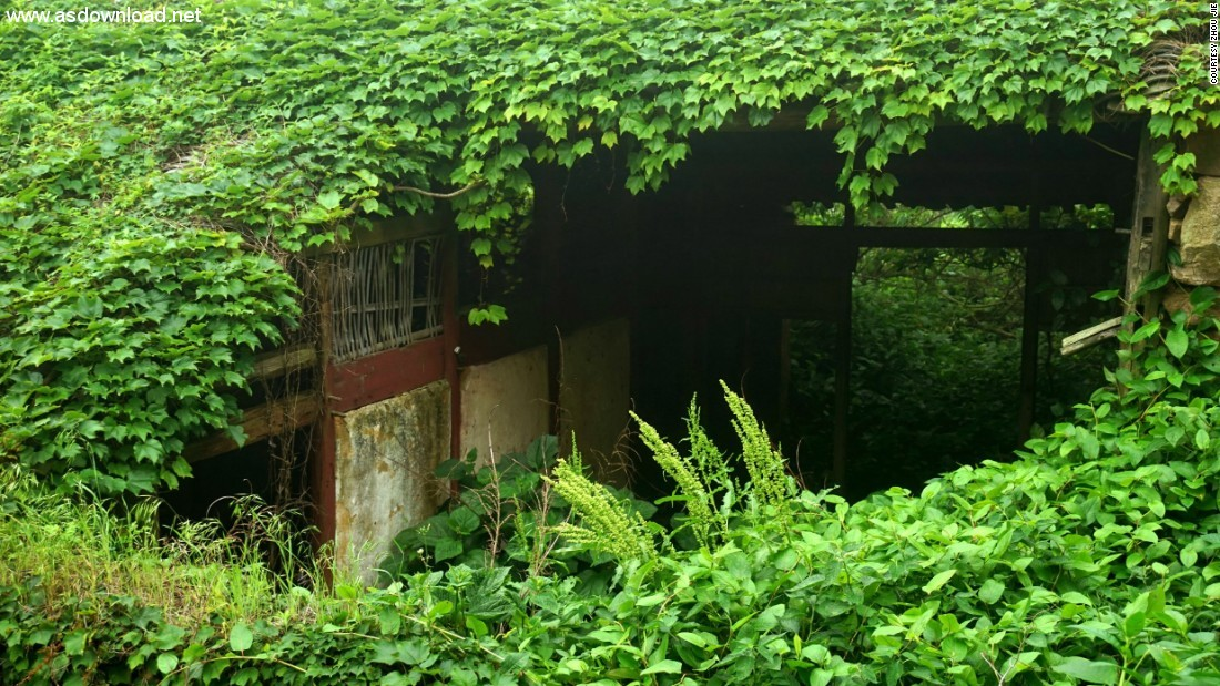 abandoned chinese village ivy vines (1)