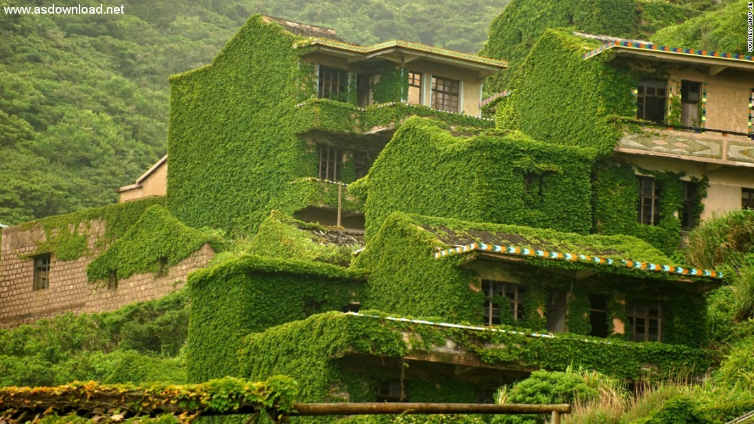 abandoned chinese village ivy vines (4)