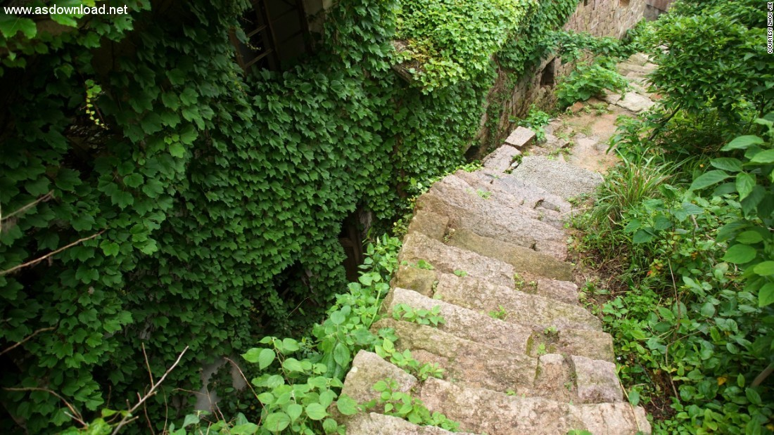 abandoned chinese village ivy vines (7)