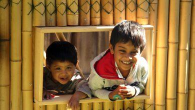 Photo of معماری خانه سازی با درخت بامبو+عکس