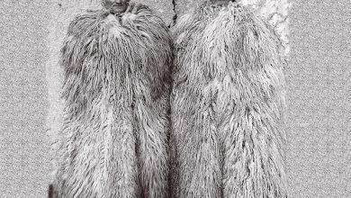 Photo of عکس های قدیمی از برادران دوقلو مجارستانی توسط Janos Stekovics