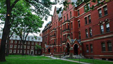 Photo of 200 دانشگاه برتر جهان در سال 2015-2014