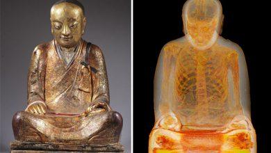 Photo of کشف مومیایی 1000 سالهای مخفی شده درون مجسمهی باستانی بودا