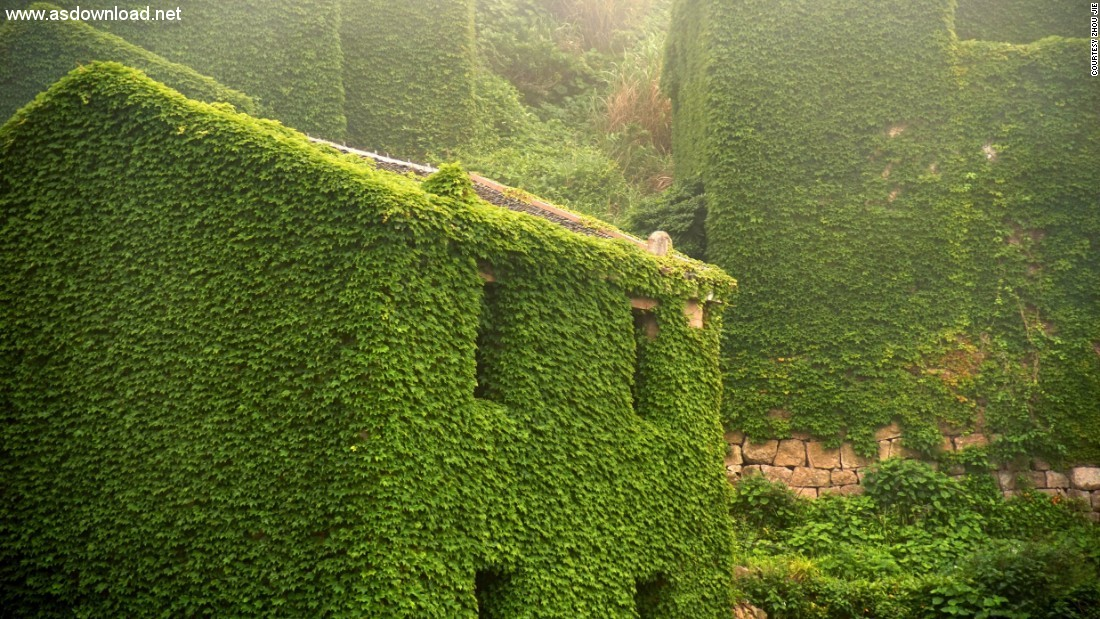 abandoned chinese village ivy vines (6)