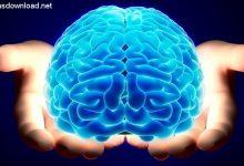 Photo of عواملی کاهش دهنده قدرت و کارکرد مغز