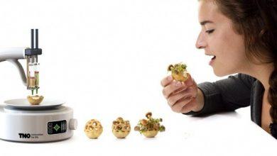 Photo of پروژه غذایی Edible Growth، انقلابی در صنعت غذاهای آماده