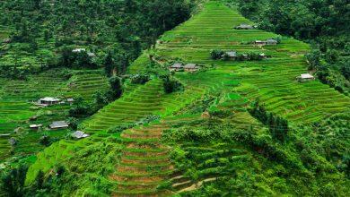 Photo of جاذبه های گردشگری و دیدنی ویتنام