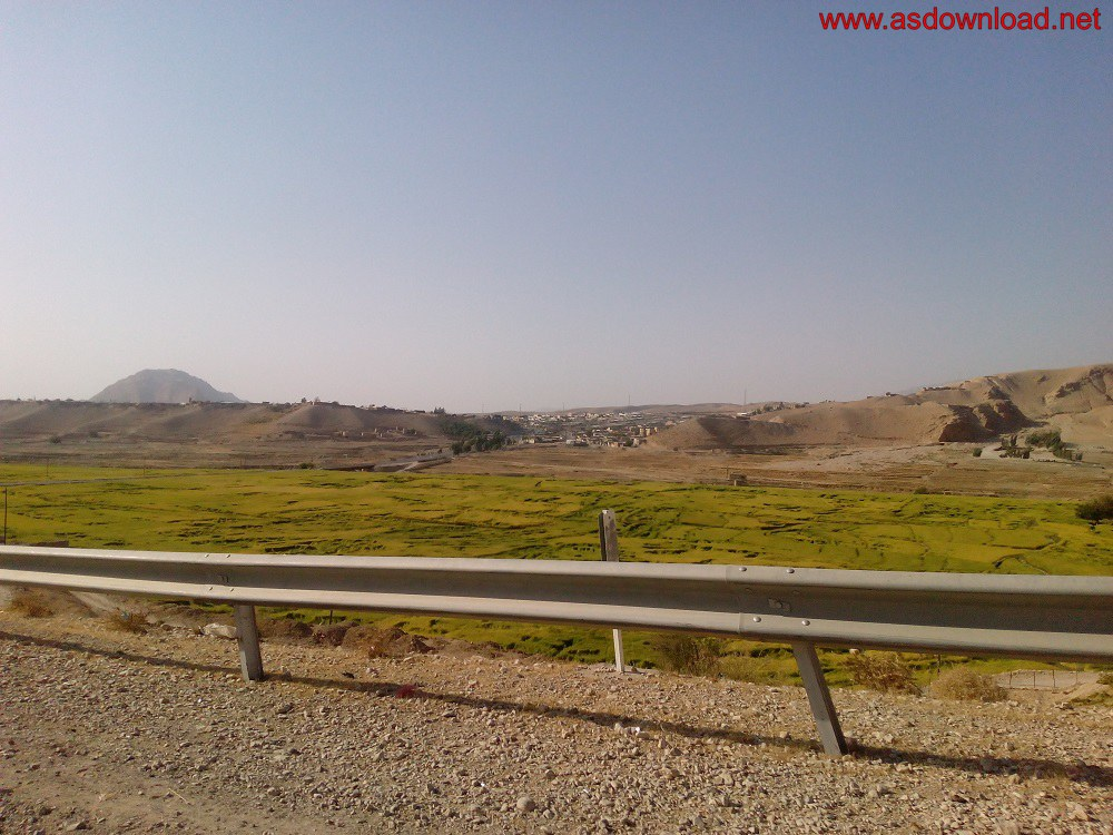 baghmalek-rice-fields-20
