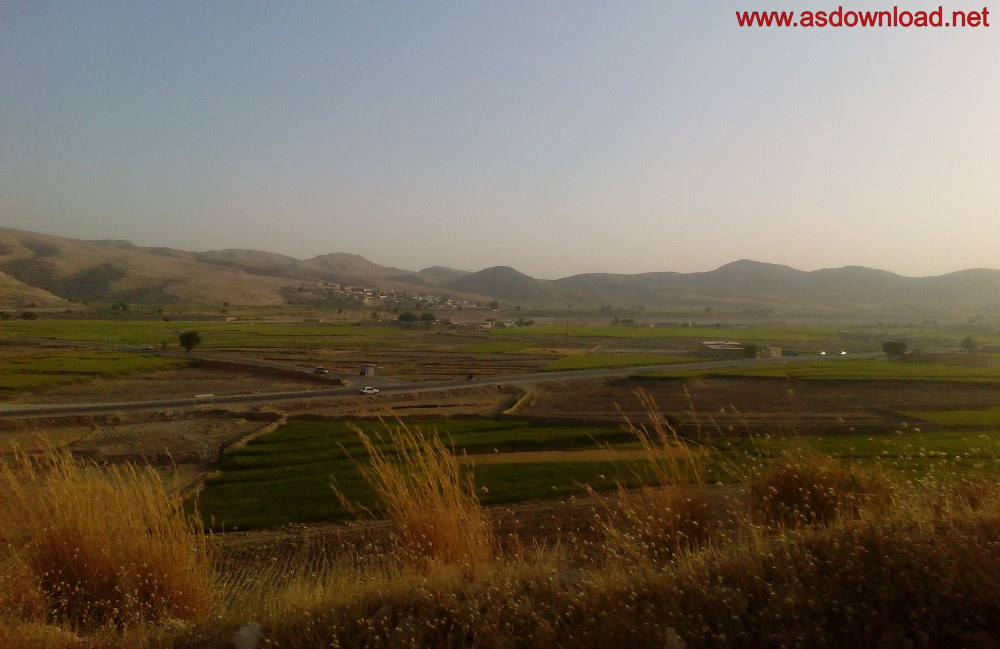 baghmalek-rice-fields-21