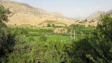 Photo of جاذبه های گردشگری باغملک – حضرت سلیمان بهشت گمشده