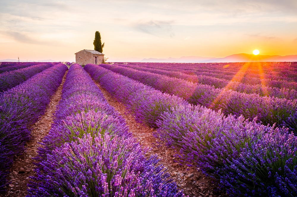 Aix-en-Provence - شهر دانشجویی زیبا!