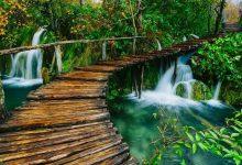 Photo of 10 مورد از زیباترین پارک های طبیعی جهان