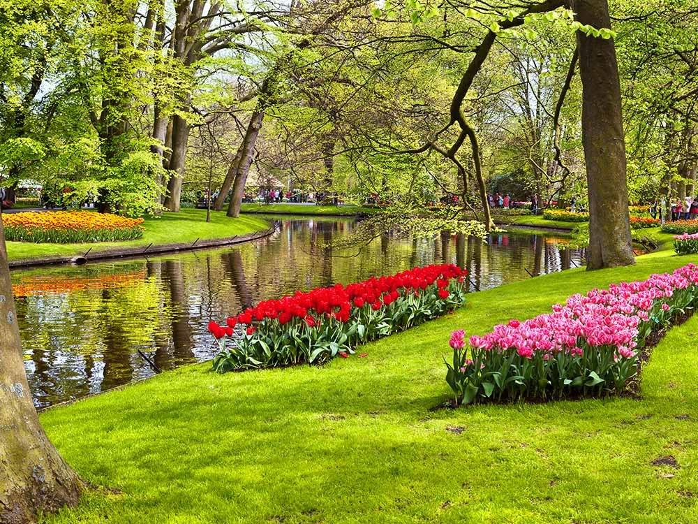 باغ پر زرق و برق Keukenhof