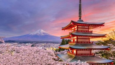 Photo of 11 جاذبه گردشگری برتر ژاپن