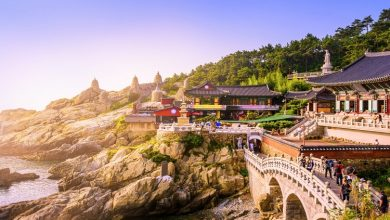 Photo of سفر 10 روزه به کره جنوبی
