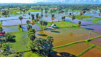 Photo of بهترین جاذبه های گردشگری کامبوج