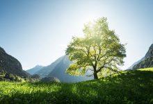 Photo of جاذبه های گردشگری کوههای آلپ در تابستان سوئیس