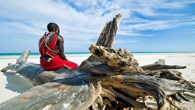 Photo of 6 ساحل برتر کنیا