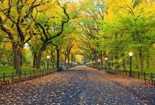Photo of جاذبه های گردشگری نیویورک، شهر هیپ هاپ ایالات متحده آمریکا