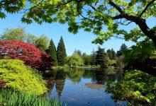 Photo of جاذبه های گردشگری ونکوور، سرزمین زیبایی کانادا