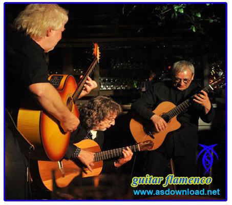 guitar flamenco