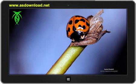 دانلود تم باغ زندگی برای ویندوز 8