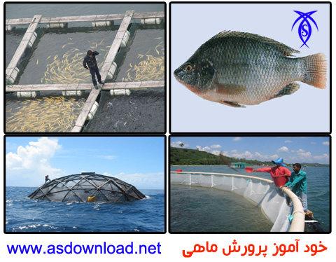 دانلود پاورپوینت خودآموز پرورش ماهی به صورت رایگان – Pisciculture