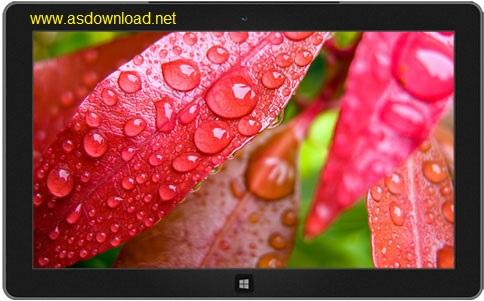 Nature theme windows 7, 8- تم طبیعت برای ویندوز