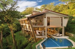 forest_house_3