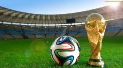 world cup 2014 barzil wallpaper (12)