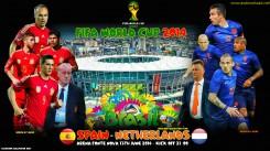 world cup 2014 barzil wallpaper (2)
