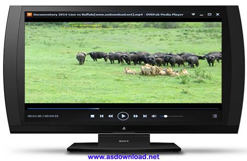 Documentary 2014-Lion vs Buffalo