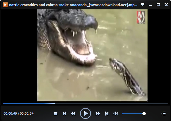 crocodiles and cobras snake Anaconda