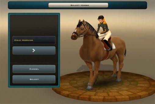3_race_horses_champions_2