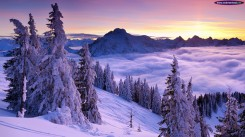winter wallpaper hd 2014 (19)