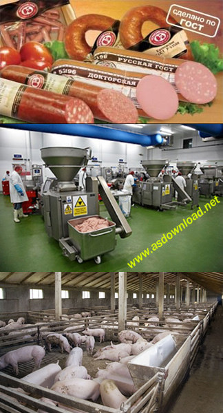 دانلود کلیپ مستند تولید سوسیس با خوک زنده