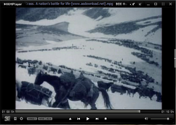 Photo of Grass: A Nation's Battle for Life-دانلود فیلم مستند علف-کوچ ایل بختیاری 1304 شمسی