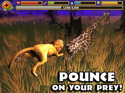 Safari simulator: Lion-بازی نبرد در نقش شیر برای اندروید