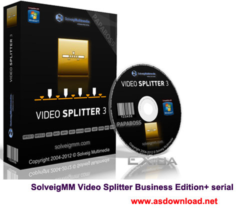 SolveigMM Video Splitter Business Edition+ serial