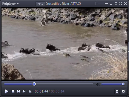Crocodiles River-ATTACK