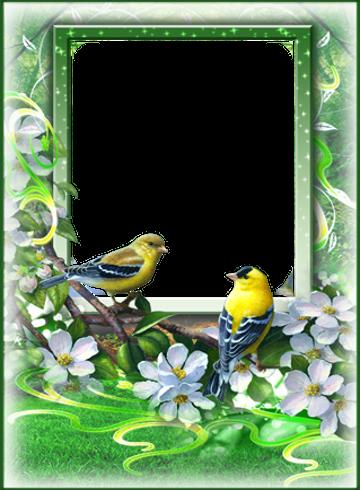 Love Frames - اپلیکیشن قاب عکس برای اندروید