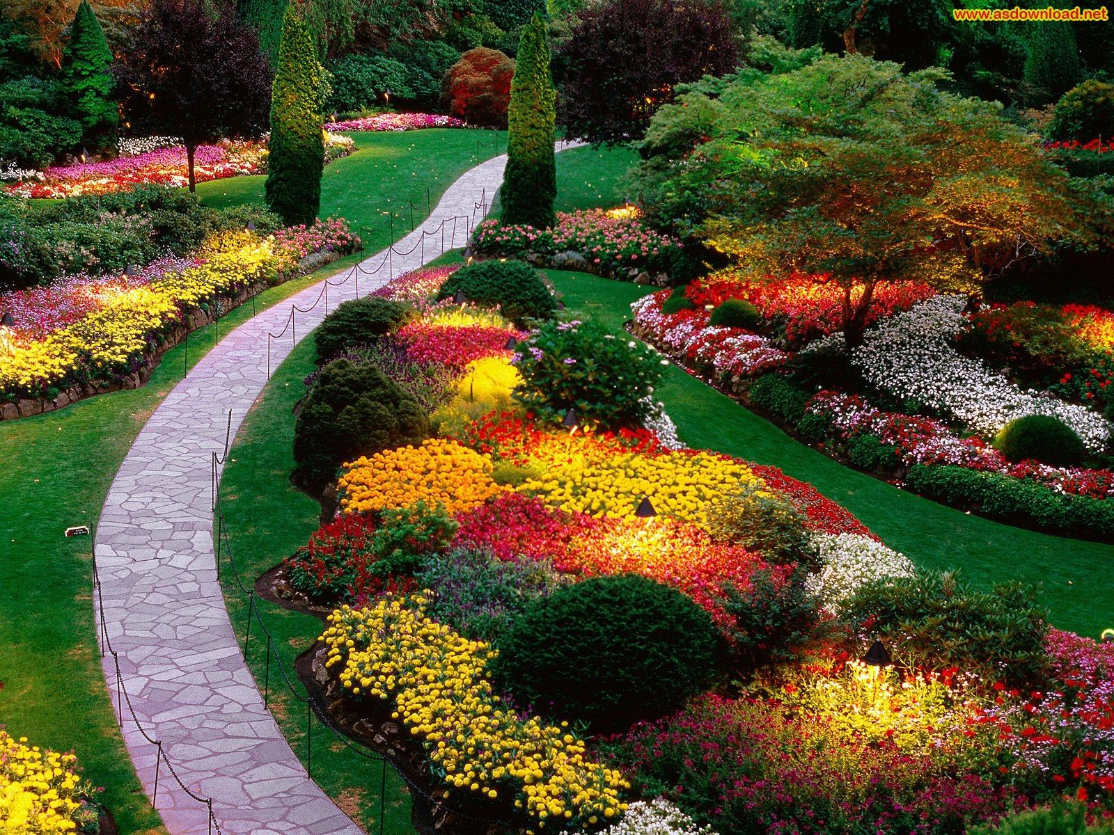 دانلود عکس زیباترین باغچه های جهان