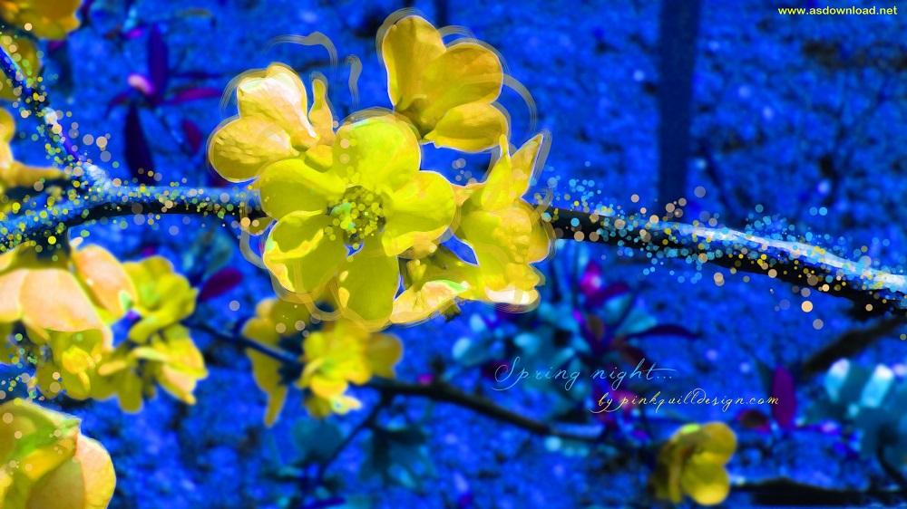 spring_season-wallpaper (4)