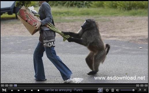 Photo of دانلود کلیپ حرکات جالب و بامزه از حیوانات