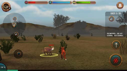 3_life_of_wild_fox