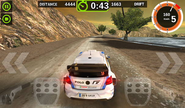 Rally Racer Dirt (6)