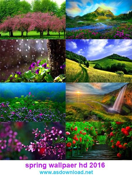دانلود والپیپر طبیعت در فصل بهار با کیفیت HD