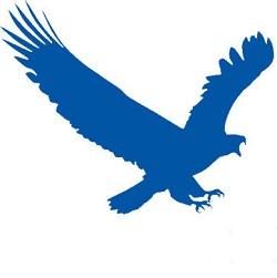 EagleGet - نرم افزار دانلود منیجر با سرعت عقاب