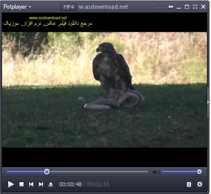 Photo of دانلود کلیپ مستند شکار مار توسط عقاب
